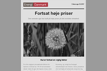 Focus news letter - Energi Danmark Group